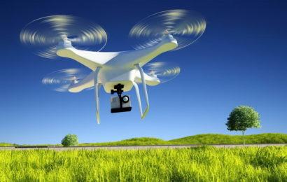 Robot smanjio upotrebu pesticida za 95%