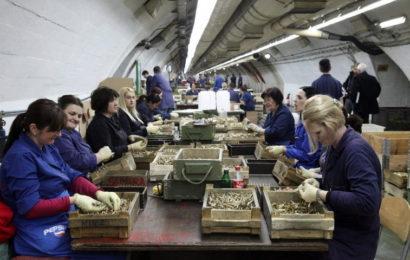 POTVRĐENO: Igman ugovorio posao vrijedan milion eura