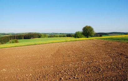 Poljoprivreda je ključni sektor razvoja BiH
