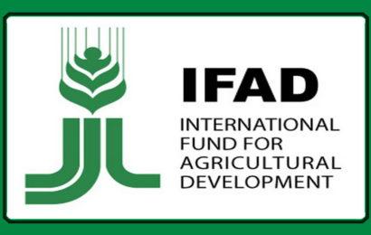 Projektom IFAD asfaltirat će se putevi, izgradit hladnjače i biznis centar