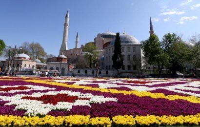 "Istanbul: Na trgu Sultanahmet izložen ""ćilim"" od 564.000 tulipana"
