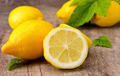 Ogroman pozitivan učinak limuna na naše zdravlje, a tjera i naporne omražene kukce
