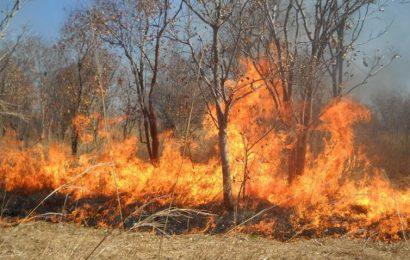 ZDK: Upozorenje građanima na opasnost od izazivanja požara