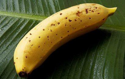 Japanci uzgajaju banane s jestivom korom