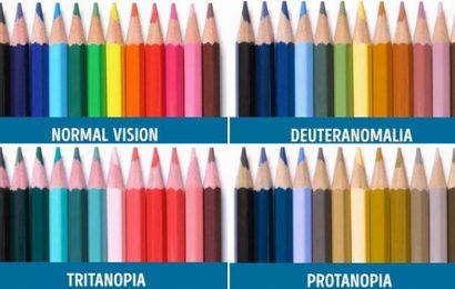 Dolaze kontaktne leće za daltonizam
