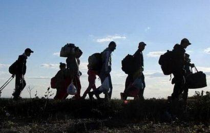 Migranti imaju veće izglede da budu zdraviji i žive duže