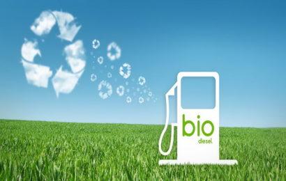 Biodizel – ušteda novca i zaštita prirode